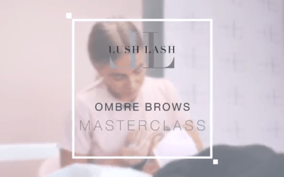 Ombre Brow Master Class
